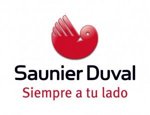 servicio-tecnico-saunier-duval-zaragoza